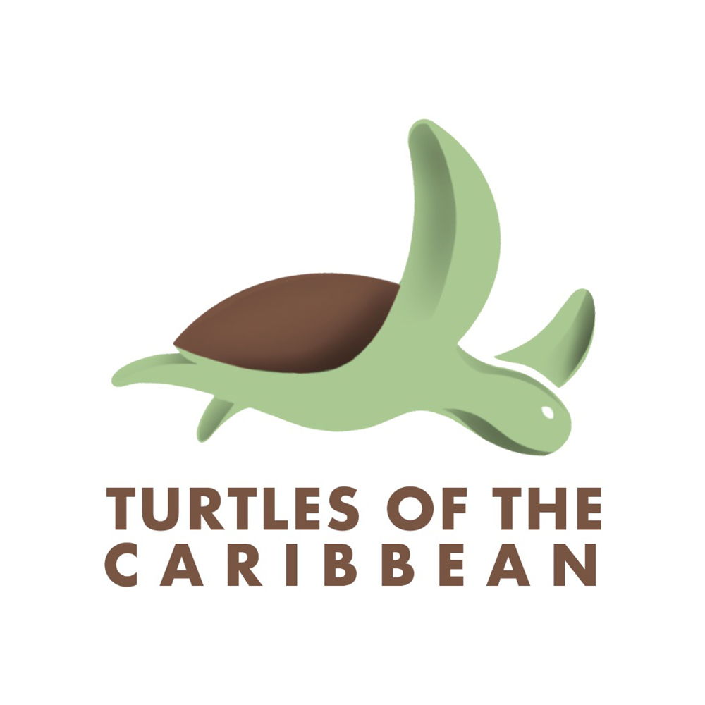 Turtles of the Carribean